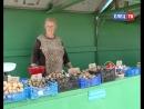 Засосенский рынок приглашает садоводов и огородников Для них организованы бесплатные места для торговли выращенной продукцией