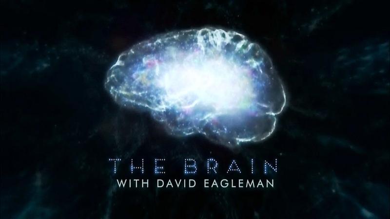 Мозг Человека 1 серия (2015) HD vjpu xtkjdtrf 1 cthbz (2015) hd