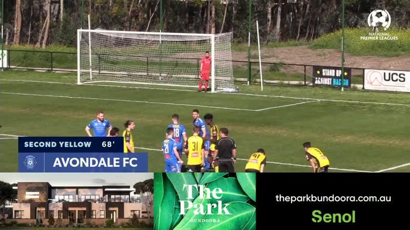 NPL Victoria U20 Round 25, Avondale FC vs Heidelberg United