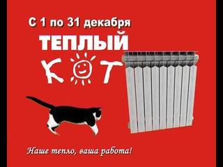 Тёплый кот (смешная реклама)
