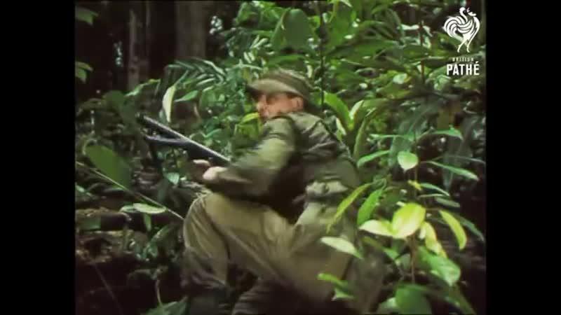 Ambush Reel 2 (1964)