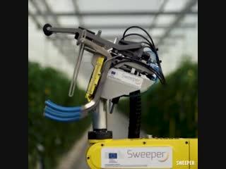 This robot was designed for harvesting vegetables inside greenhouses 🌶