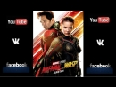 Ant-Man and The Wasp  Pelicula completa  Español Latino