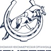 "КСК ""Кентавр"" Ярославль"
