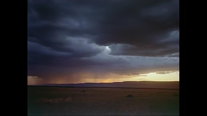 The Serengeti - русская озвучка