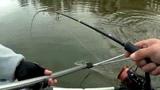 Выменял фартовый воблер! Твичинг, джерк, джиг на реке в Ноябре