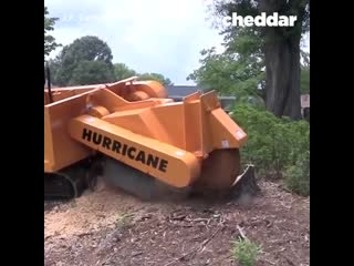 Hurricane trx stump cutter