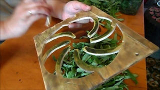 Скручивания листьев чая ручным роллером (а также секреты правильной ФЕРМЕНТАЦИИ иван-чая).