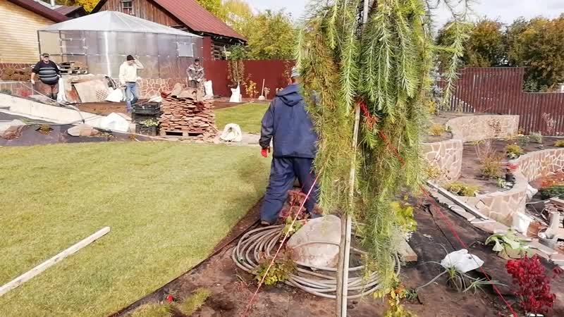 Ландшафтная мастерская г. Арзамас. Посадки растений и устройство рулонного газона. Арзамас, 2018