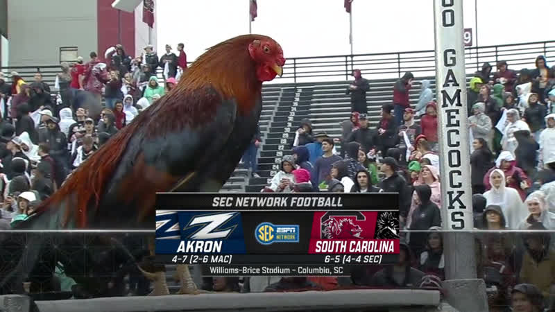 NCAAF 2018 Week 14 Akron Zips - South Carolina Gamecocks 2H EN