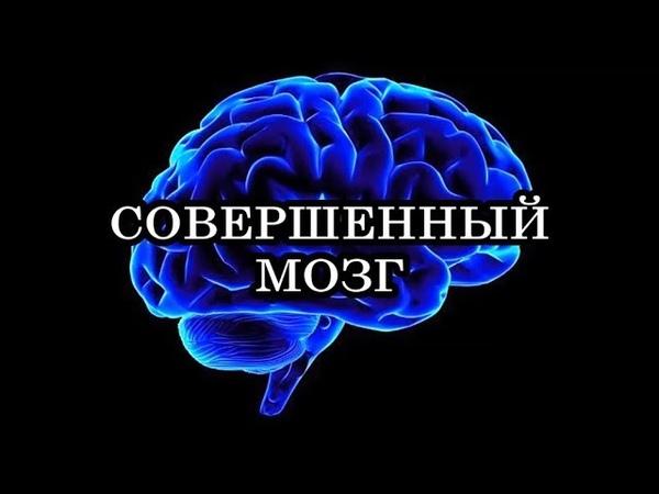 СОВЕРШЕННЫЙ МОЗГ Дипак Чопра Рудольф Танзи