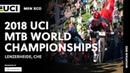 2018 UCI Mountain Bike World Championships - Lenzerheide (CHE) / Men's XCO