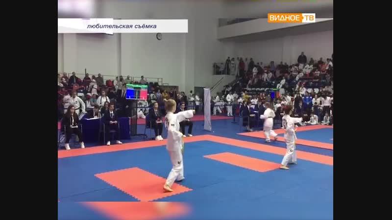 Победы на Кубке - участие видновских спортсменок в соревнованиях по тхэквондо Русский воин