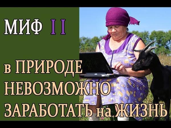 10 ГЛАВНЫХ ОБМАНОВ ЧЕЛОВЕЧЕСТВА О ЖИЗНИ В ПРИРОДЕ. МИФ II