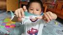 Đồ chơi các con vật|các con vật của bé| Toys for animals | the animals of the baby