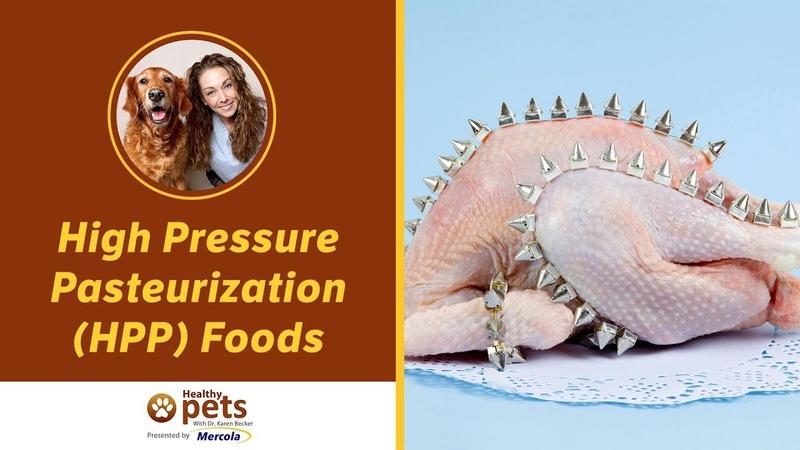 Еда, пастеризованная под высоким давлением High Pressure Pasteurization (HPP) Foods