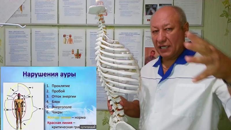 Суставы-межпозвоночные диски-аура-Elev8-А.Шауро