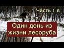 ОДИН ДЕНЬ ИЗ ЖИЗНИ ЛЕСОРУБА - Жизнь и работа в лесу на вахте зимой в Сибири