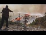 На горе Агармыш в Крыму сгорели краснокнижные можжевельники