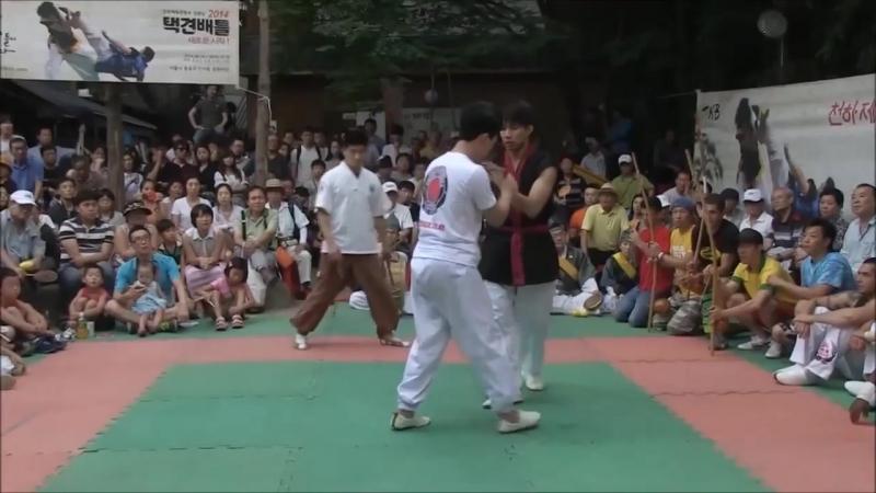 Capoeira vs Taekkyeon
