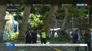 Новости на Россия 24 • Упавшее дерево убило 11 человек в Португалии