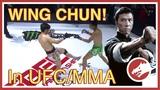 WingChun in UFC MMA!