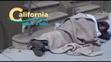 The REAL California - The Same, Only Different (CA3)