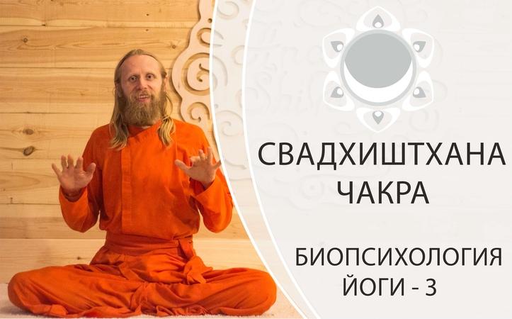 БИОПСИХОЛОГИЯ ЙОГИ-3. СВАДХИСТАНА ЧАКРА.