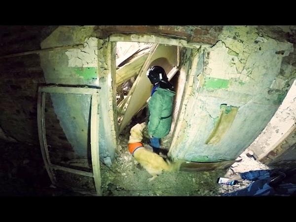 Работа поисковой собаки ПСО Ярспас в забросе