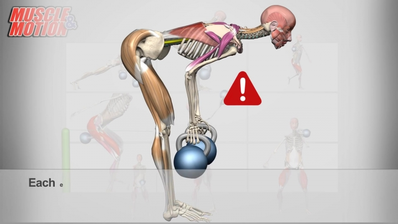 Kettlebell anatomy (1080p).mp4