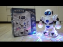 Танцующий робот со светомузыкой.