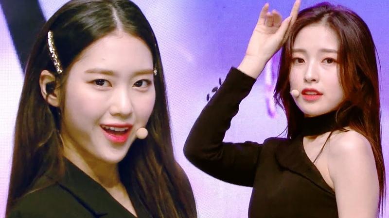 OH MY GIRL - The Fifth Season (SSFWL)ㅣ오마이걸 - 다섯 번째 계절 (SSFWL) [Music Bank Ep 980]