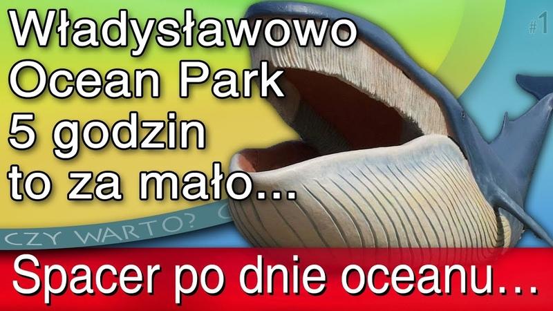 Czy warto ➤ Ocean Park Władysławowo 2017 cena relacja video HD przewodnik