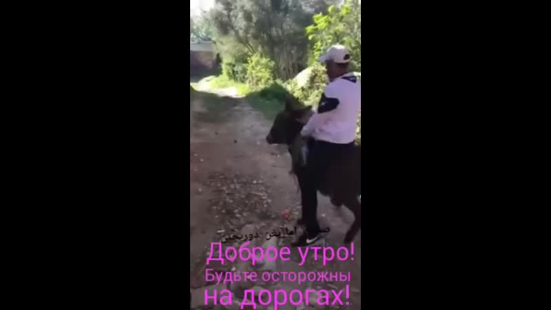 VIDEO-2019-06-10-08-19-28.mp4 (360p).mp4