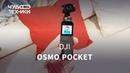 Обзор OSMO Pocket — лучшая камера для смартфона