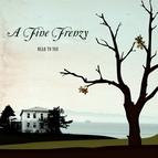 A Fine Frenzy альбом Near To You