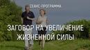 Видеосеанс Заговор на увеличение жизненной силы   Марта Николаева-Гарина