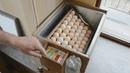 Выращивание кур Пушкинской породы. От яйца до яйца.