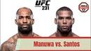 Манува Сантос Детальный анализ боя UFC231