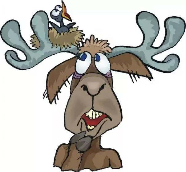 опасности, подстерегающие нас в летнем лесу берегите лицо от налипания высоковольтных проводов, которых в лесу пусть немного, но они-таки встречаются по цене 500 рублей за килограмм. избегайте