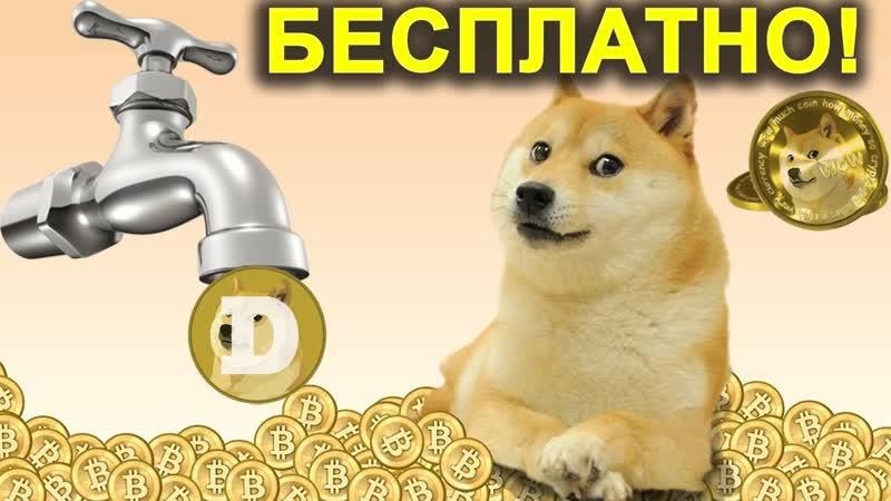 Бесплатные Догикоины (Dogecoin) каждый час