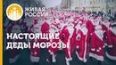 ВМЕСТЕ | Живая Россия | Настоящие Деды морозы