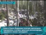 В сети появилось видео с очередным доказательством незаконной вырубки лесов Иркутской области