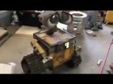 Wall-E в реальности