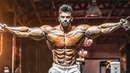 MONSTER CHEST and SHOULDERS WORKOUT Sergi Constance Aesthetics BODY Motivation