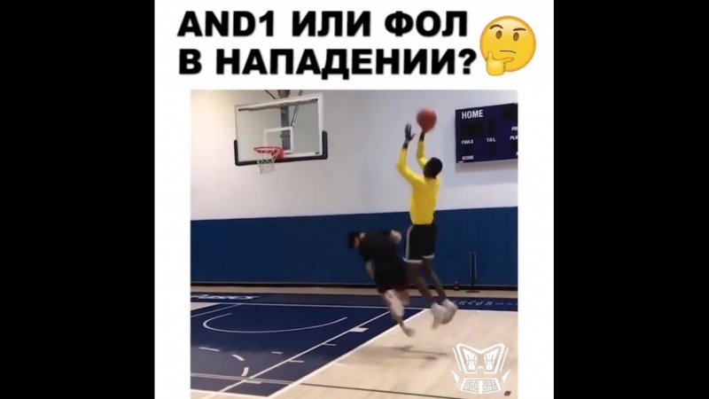 Basketball Vine 1247
