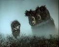 Ёжик в тумане coub