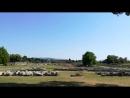 Atena Temple Paestum Italy