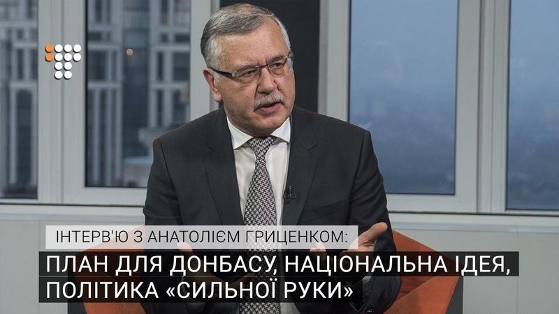 План для Донбасу, національна ідея, політика «сильної руки» — інтерв'ю з Анатолієм Гриценком