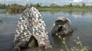 AFFUTS FLOTTANTS en Camargue. Séjour photo aux Marais du Vigueirat